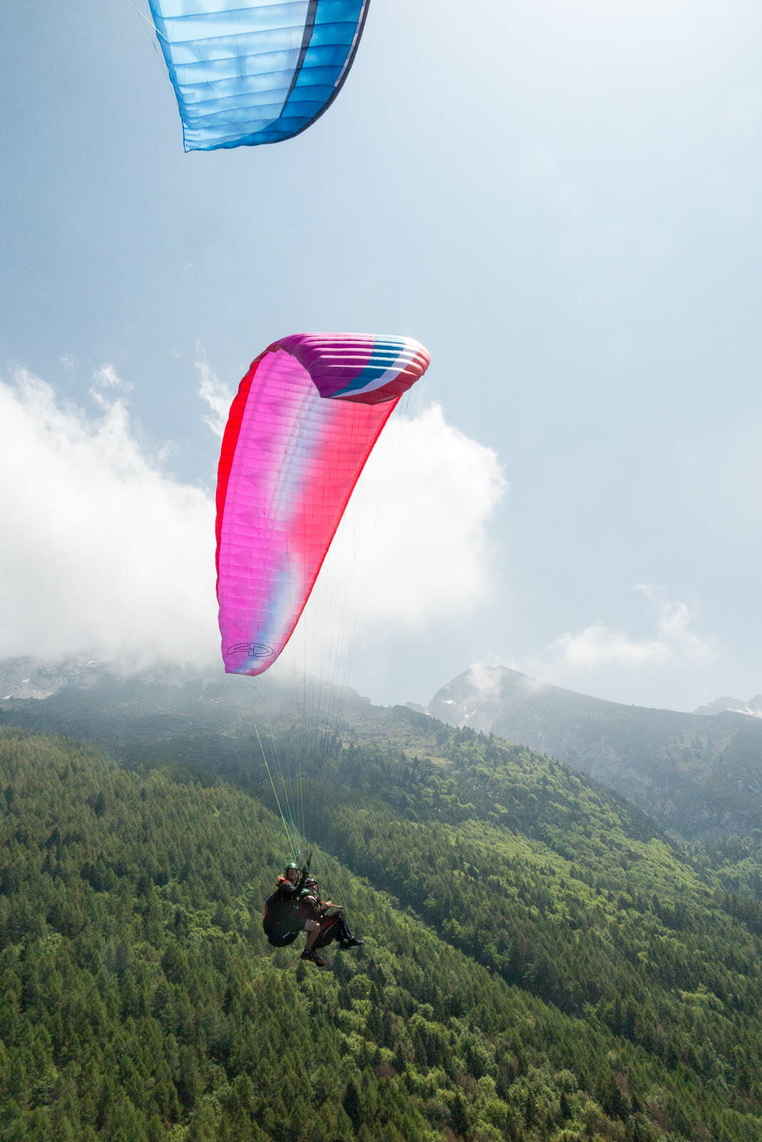 paraglider and monte baldo