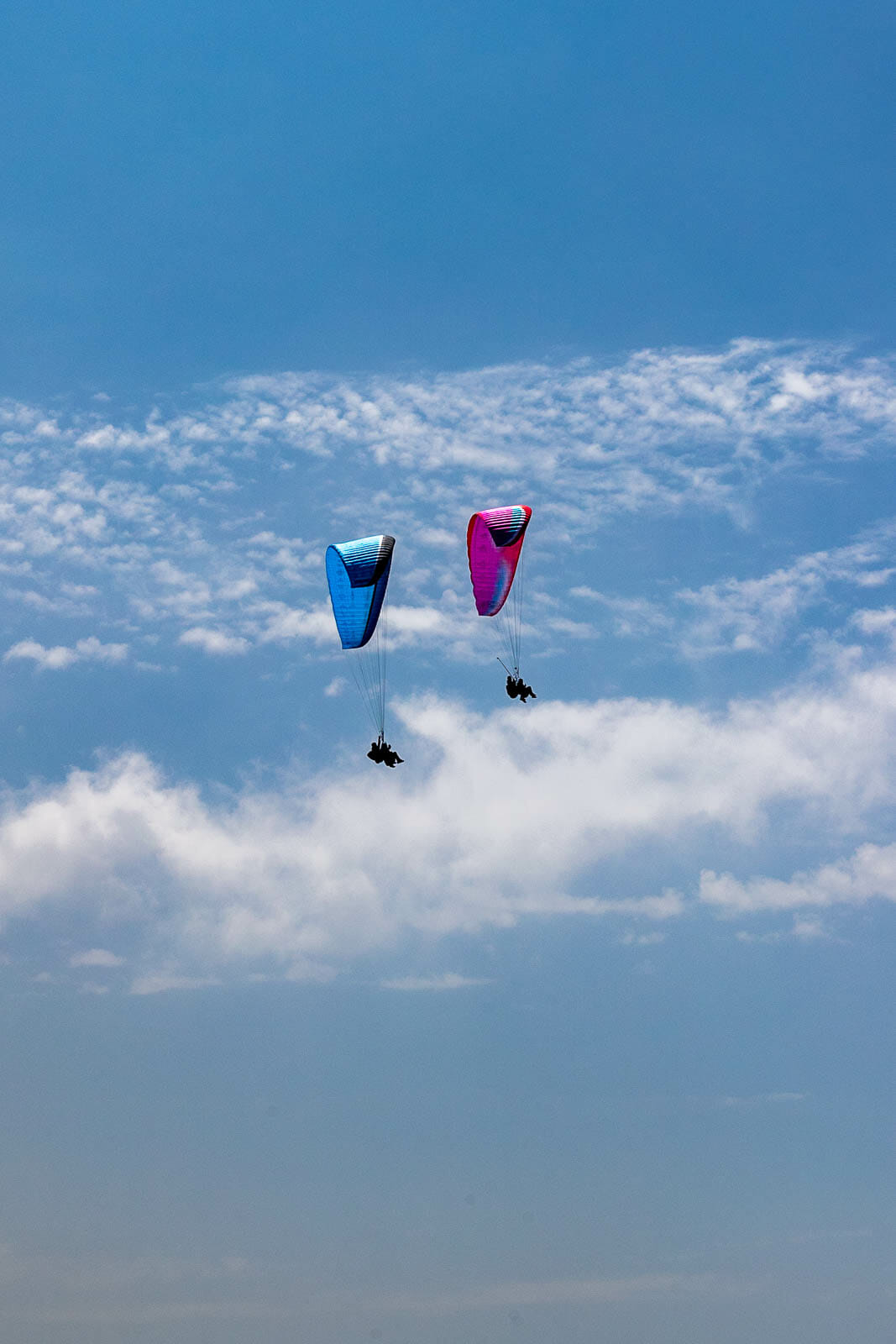 paragliders and sky
