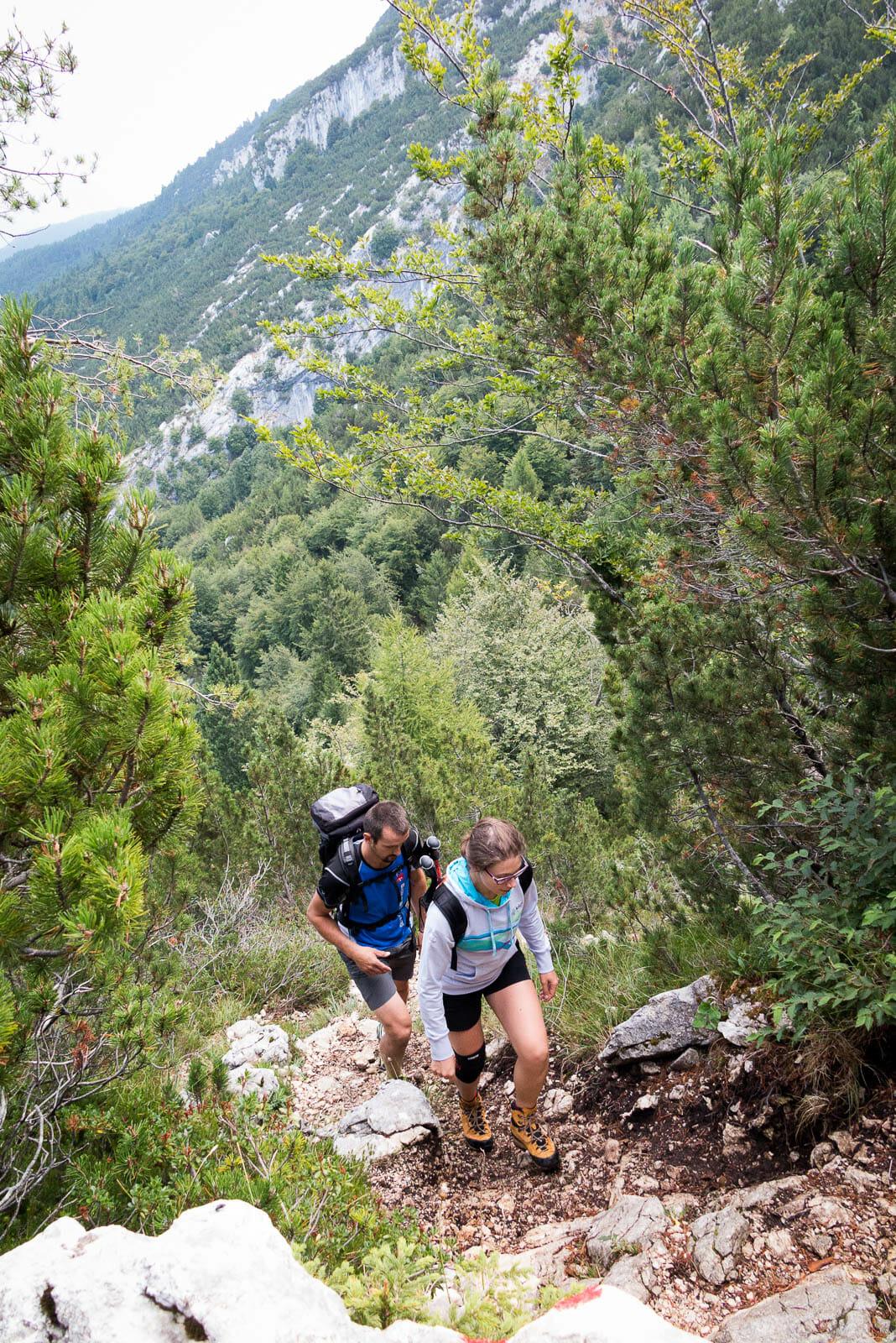 hiking to forcella valdritta in the forest
