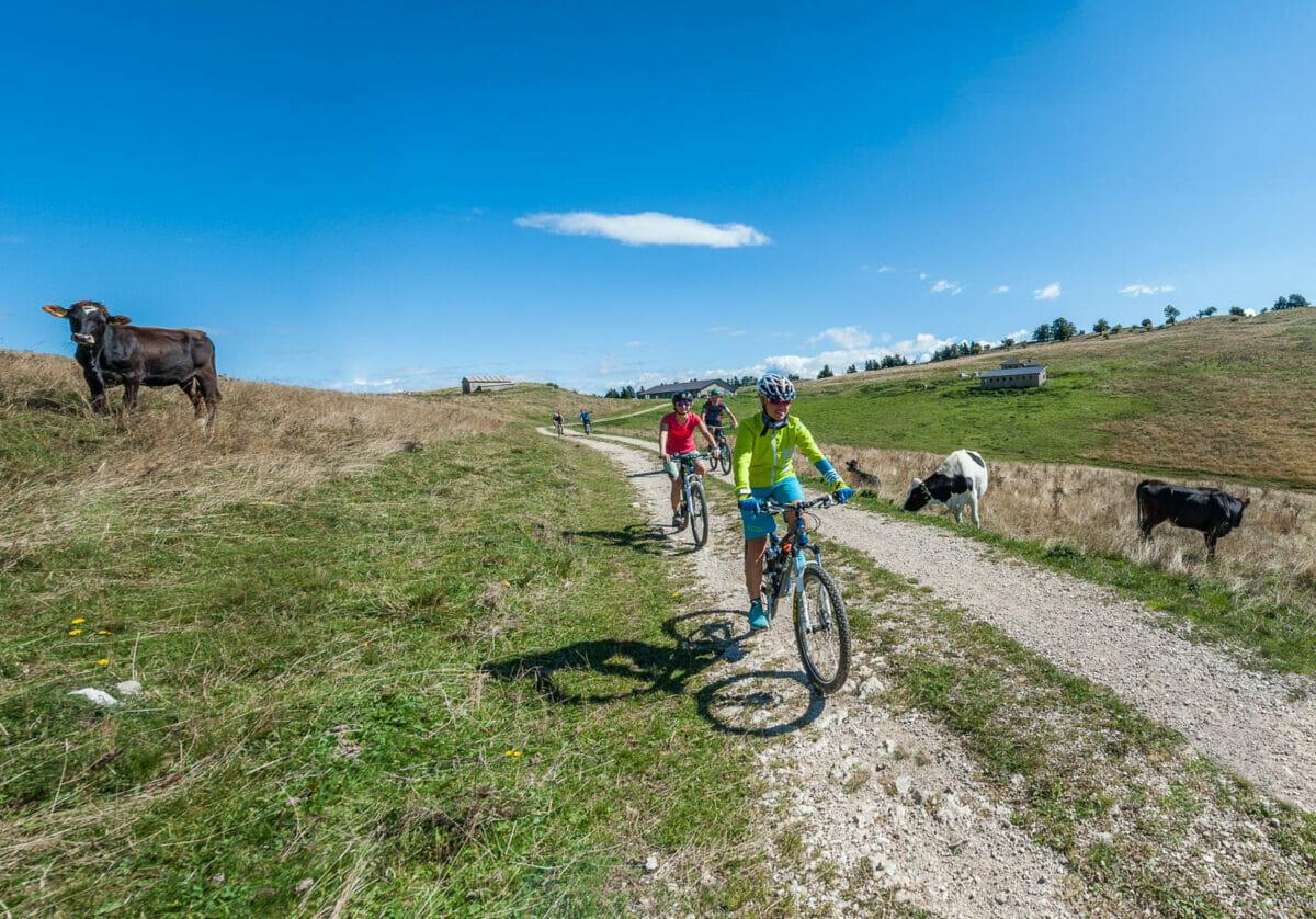 facile percorso bici red tour