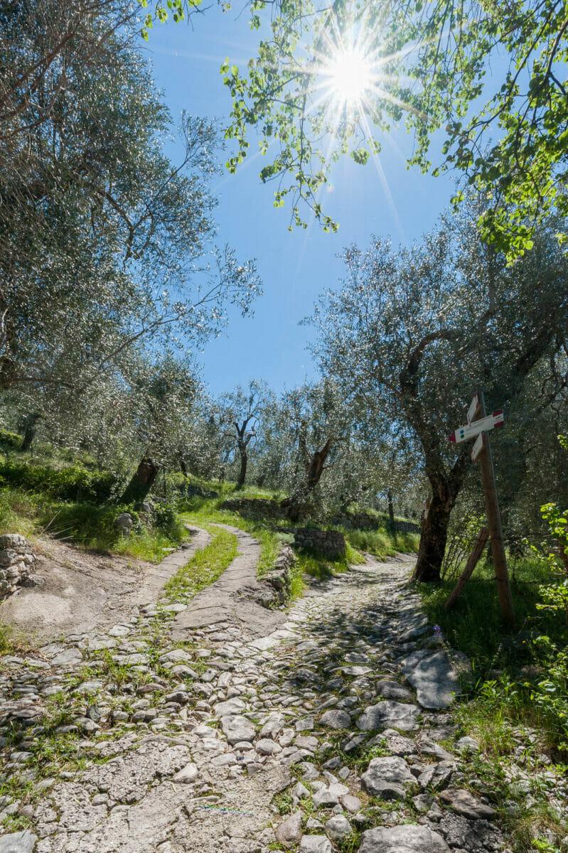 Wandern nach Campo: Brenzone Weilern am Gardasee