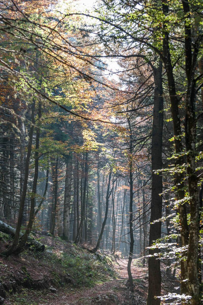 la riserva del monte baldo in autunno