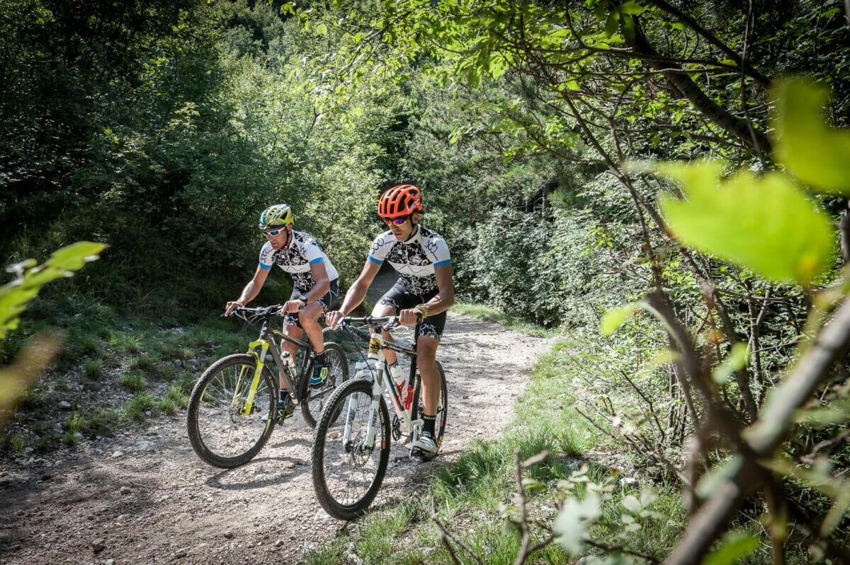 sentiero nel bosco in bici