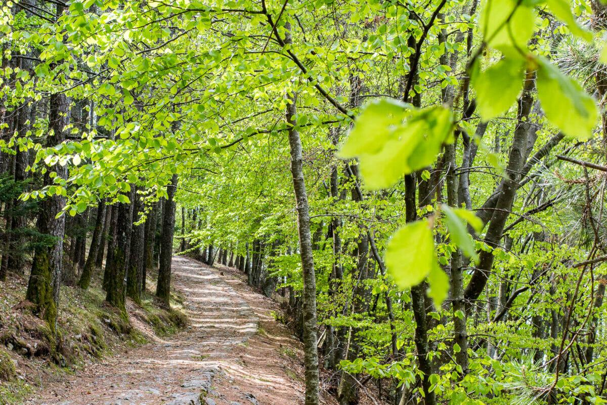 04 monte baldo nature reserve 360gardalife 1200x801