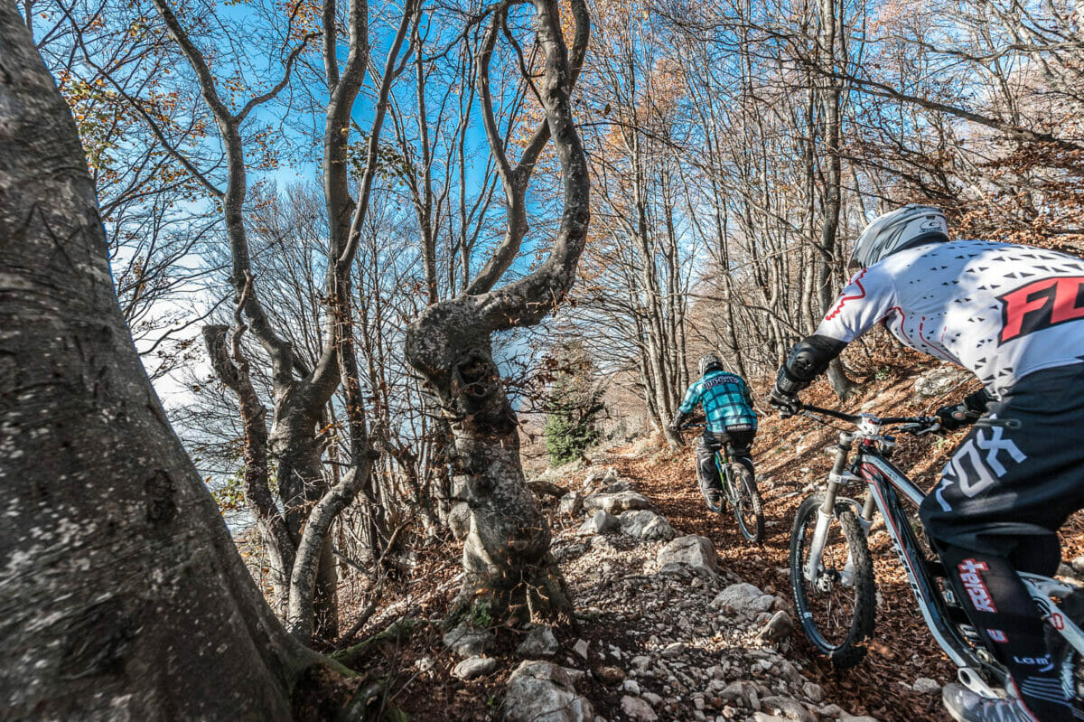 mtb freeride on monte baldo in the wood