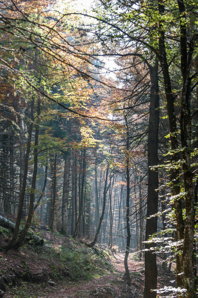 06 monte baldo nature reserve 360gardalife 799x1200