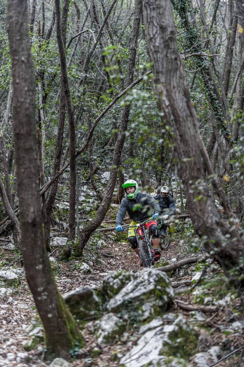 mtb freeride on monte baldo wood