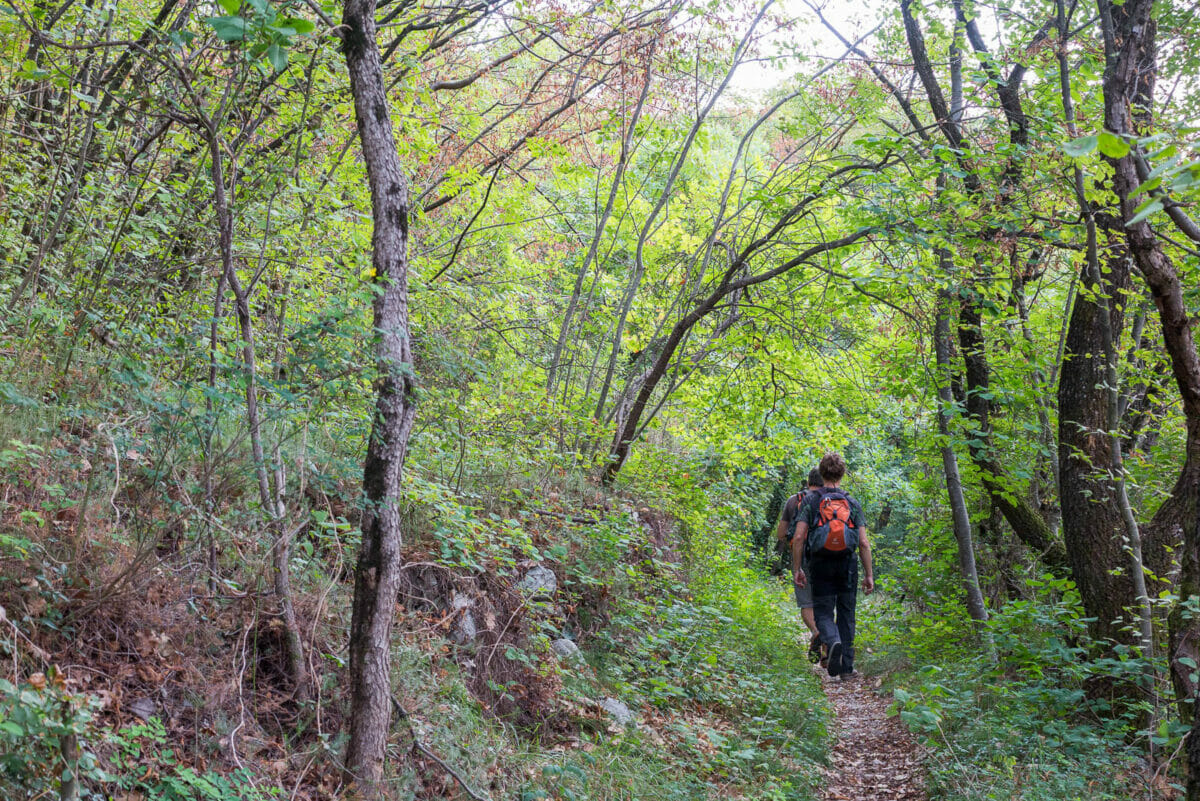 path 38 san zeno di montagna