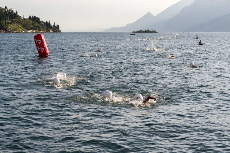north lake swim cup 2016