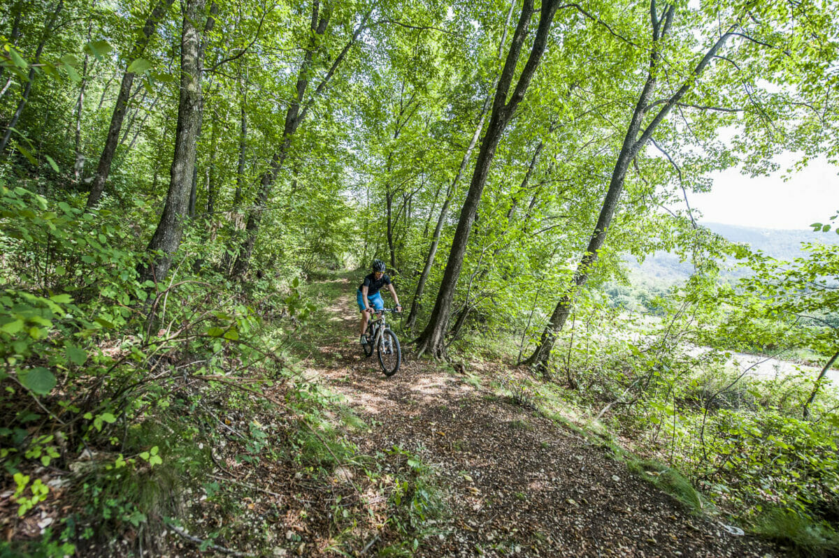 uphill with bike in the woods