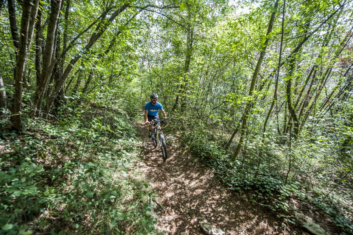 bike in the woods far