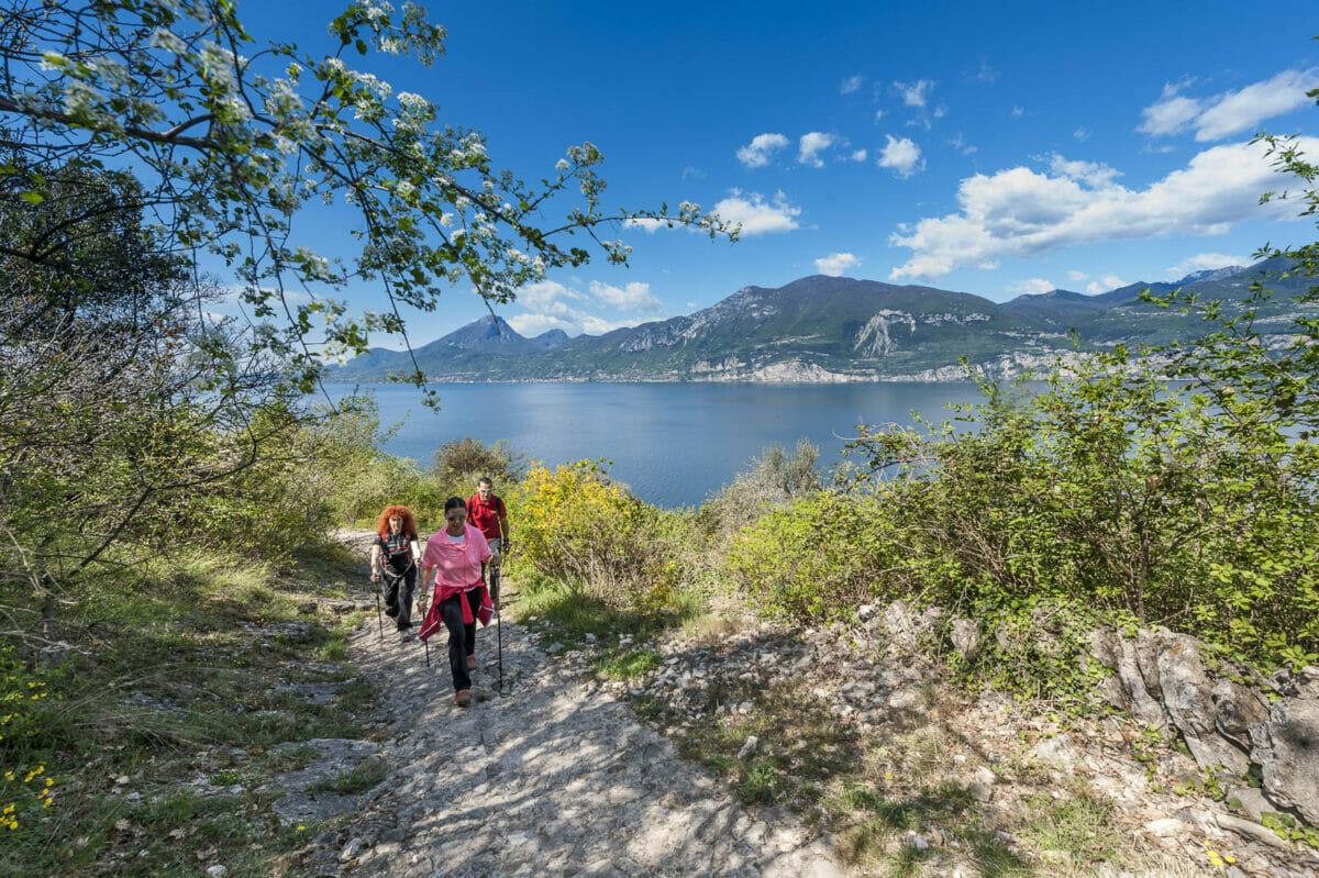 nordic walking mit seeblick