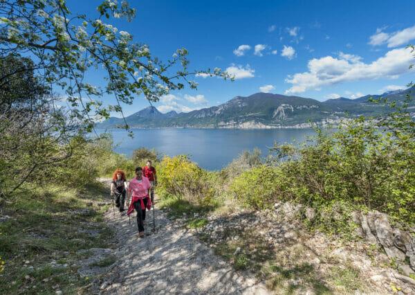 sentiero nordic walking brenzone vista lago