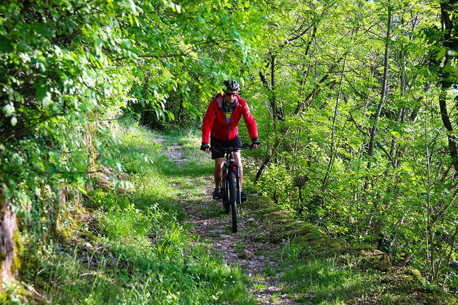 e-bike bosco