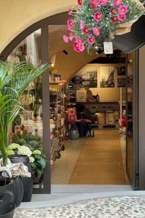 NSG Concept Store
